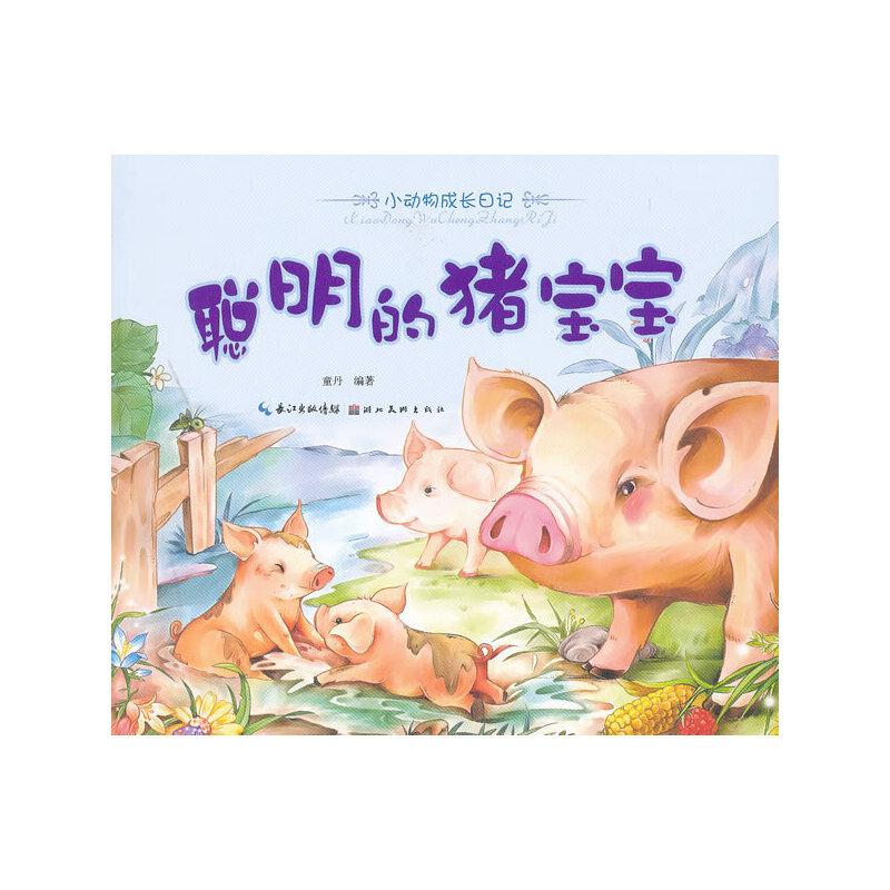 美绘本小动物成长日记 聪明的猪宝宝