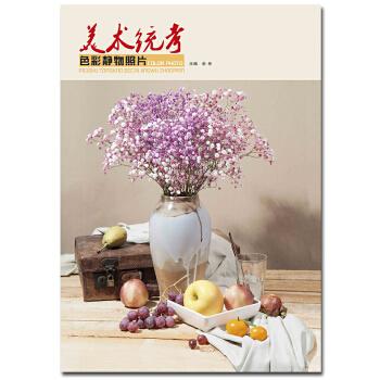 色彩静物照片 谢彬主编 色彩照片书色彩静物照片写生水果花卉蔬菜瓶罐