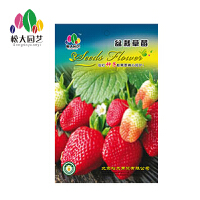 盆栽草莓种子小袋松大园艺家庭阳台盆栽精选花卉蔬菜种子易养易活