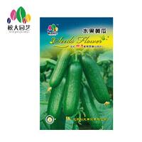 水果黄瓜种子小袋松大园艺家庭阳台盆栽精选花卉蔬菜种子易养易活