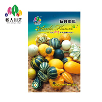 玩具南瓜种子小袋松大园艺家庭阳台盆栽精选花卉蔬菜种子易养易活