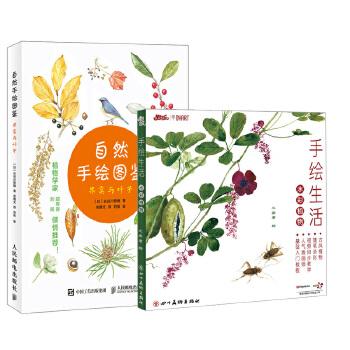 【全2册】自然手绘图鉴 果实与叶子 手绘生活(水彩植物) 植物绘画技巧入门植物图鉴百科全书植物爱好者