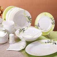 【当当自营】SKYTOP斯凯绨 碗盘碟碗筷陶瓷骨瓷餐具套装 48头绿野仙踪