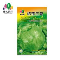 结球生菜花种子大袋松大园艺四季种籽生菜蔬菜盆栽四季种子易养活