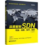 深度解析SDN――利益、战略、技术、实践