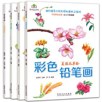 花草水果美食动物手绘画彩铅画入门教程书 素描绘画教程 儿童成人手绘