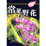 常见野花:大自然珍藏系列