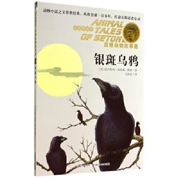银斑乌鸦(注音美绘版)/西顿动物故事集