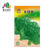 木耳菜 花种子(大袋)松大园艺四季种花种子盆栽四季种子易活