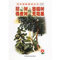 榕树.菩提树.橡皮树.无花果――百花盆栽图说丛书