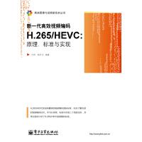 新一代高效视频编码H.265/HEVC:原理、标准与实现